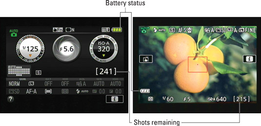 Press the Info button to view picture‐taking settings on the monitor.