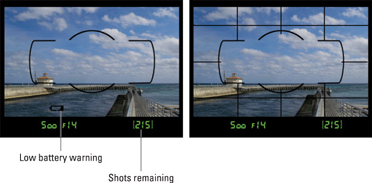 Picture settings also appear at the bottom of the viewfinder (left); enable the grid for help with
