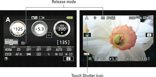 This S represents the Single Frame shutter‐release option, which produces one picture for eac