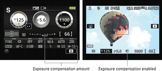 These indicators tell you whether Exposure Compensation is enabled.