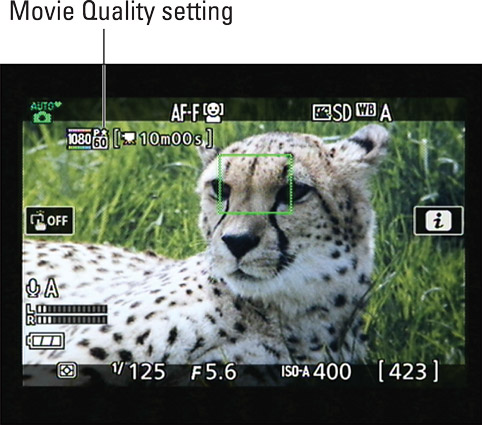 The tiny star indicates the High Movie Quality setting; the star disappears when you select the Nor