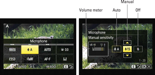 You can adjust the Microphone setting from the control strip.