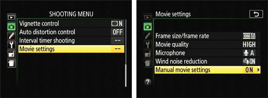 Enable this option to take control over movie exposure.