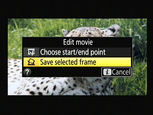 This option lets you save a single frame as a JPEG image.