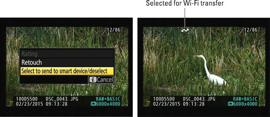 "During playback, press the <b/></noscript><i>i</i> button and then choose this option to tag a photo for wi"" width=""535″/> <div class="