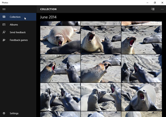 The Photos app displays photos stored on your computer as well as on OneDrive.