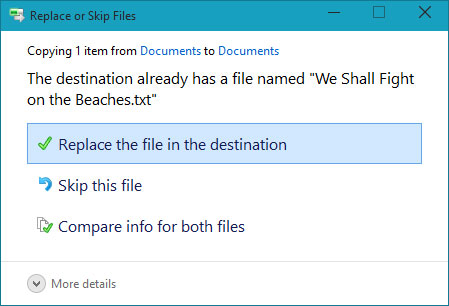 Choose whether to replace the existing file, skip the file, or choose which file to keep.