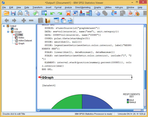 The SPSS Statistics Viewer window displaying text and graphics with some objects selected.
