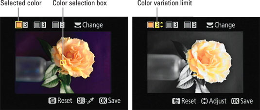 To select a color you want to keep, move the yellow box over it and press the AE-L/AF-L button.