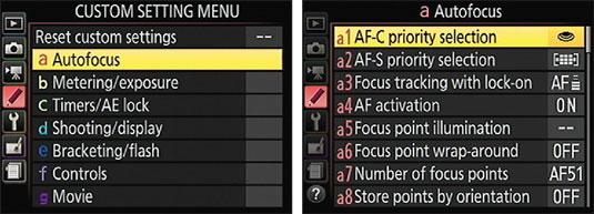 The Custom Setting menu contains submenus of advanced options.