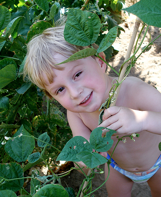 A boy playing with plants in a garden.