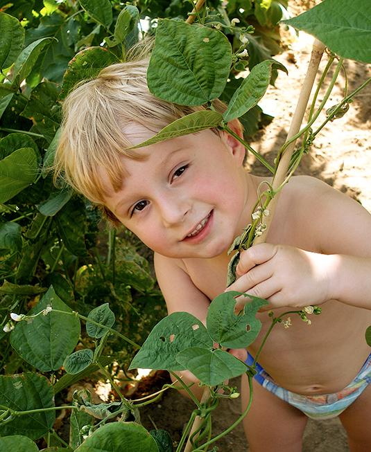 A color-corrected photo of a boy playing with a plant.