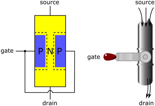 Like a valve, a transistor can be off (no current), fully on (maximum current), or partially on (am