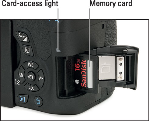 Insert the memory card with the label facing the back of the camera.