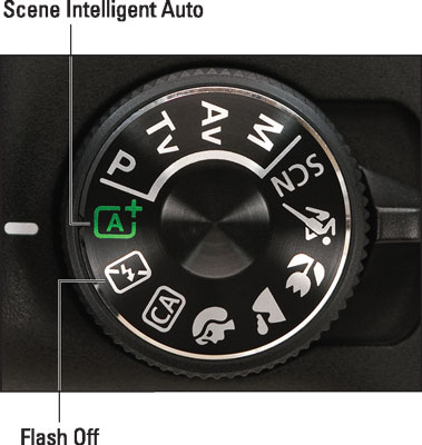 Set the Mode dial to Auto or Auto Flash Off for point‐and‐shoot simplicity.