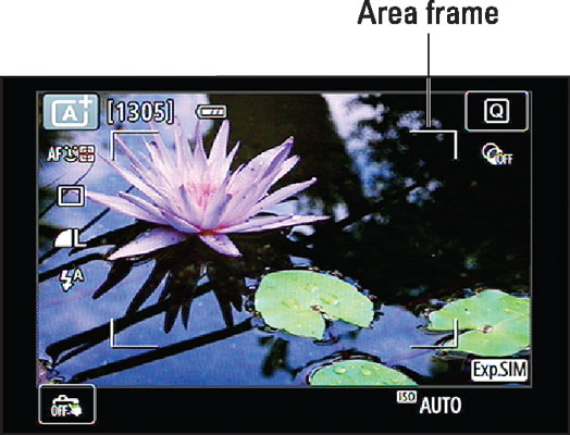 Move the focus frame over your subject and press the shutter button halfway to focus.