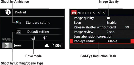 Some scene modes enable you to adjust a few settings via the Quick Control screen or Shooting Menu