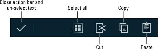 Text-selection contextual action bar.