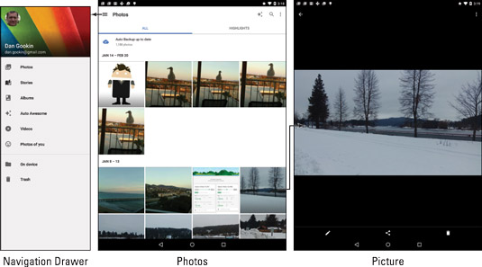Image organization in the Photos app.