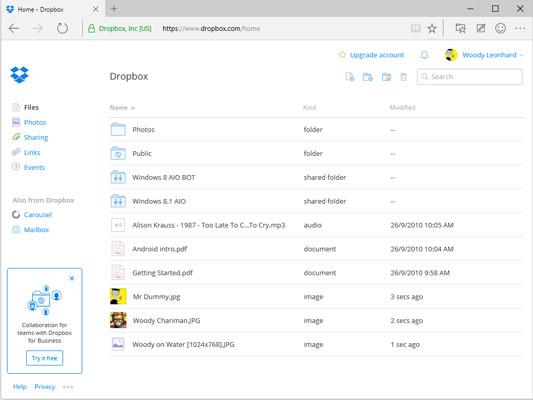 Dropbox popularized cloud storage.
