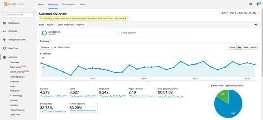 The Google Analytics dashboard.