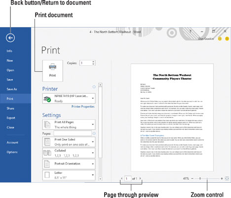 The Print screen in Word 2016.