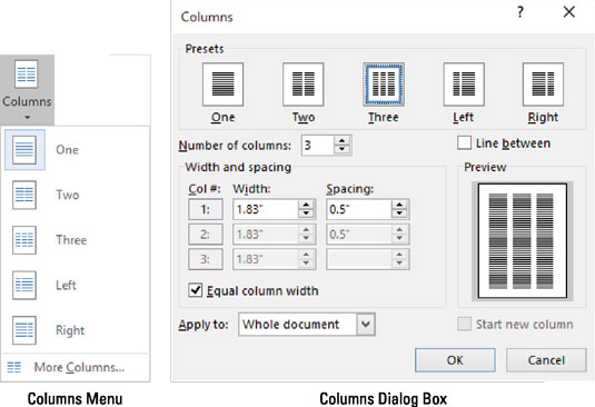 The Columns menu and dialog box.