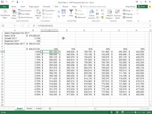 Sales projection spreadsheet after creating the two-variable data table in the range C8:H24.