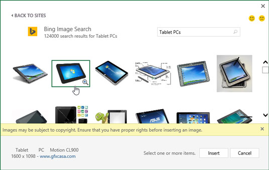 Selecting an image located with Bing Image Search to download into the current worksheet.