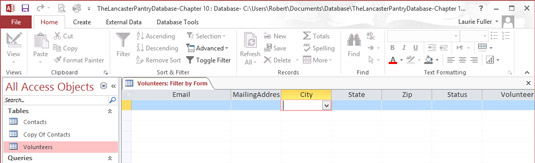 How to Filter Data in Access 2016 - dummies