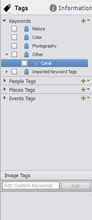 The Tags panel after adding a tag in the Keywords category.