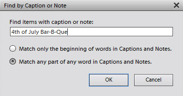 In the Find by Caption or Note dialog box, specify search criteria.