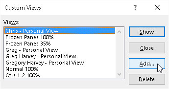 Adding a new view for the worksheet in the Custom Views dialog box.
