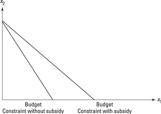 Showing the effect of a subsidy on the budget constraint.