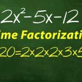 622696558001_691927830001_vs-691913120001.jpg