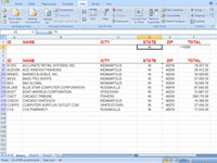 Excel displays the results of a search done using advanced filtering.