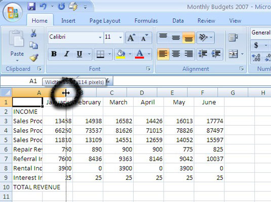 How to Change Column Width and Row Height in Excel 2007 - dummies In Excel Length on