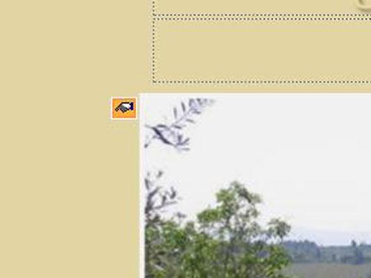 75107.image8.jpg