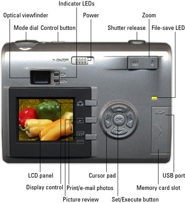 The back of a typical digital camera.