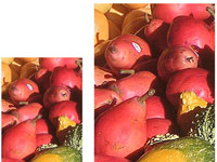 The small image (left) has a much higher image quality than the large image (right).