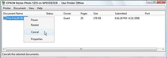 Use the print queue to cancel a print job.