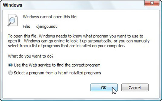 Sometimes Windows refuses to open a file.