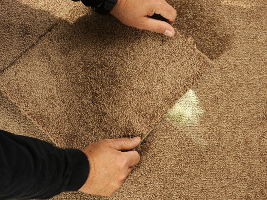 Covering a stain in the carpet with a carpet remnant.