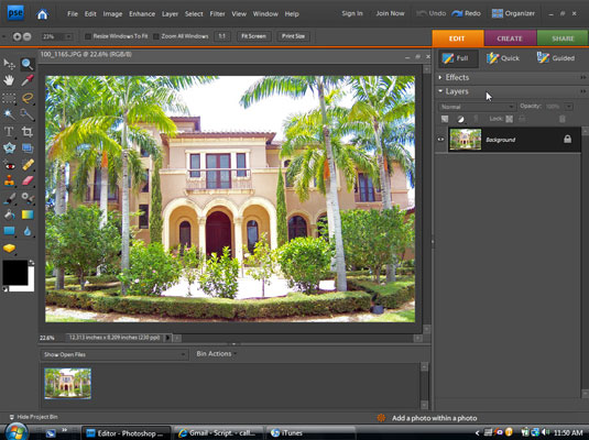 Editing a Layer of a Digital Photo with Adobe Photoshop