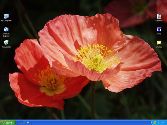 The desktop with a new image as the background.