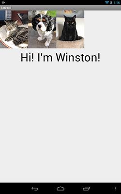 kidscode-winston
