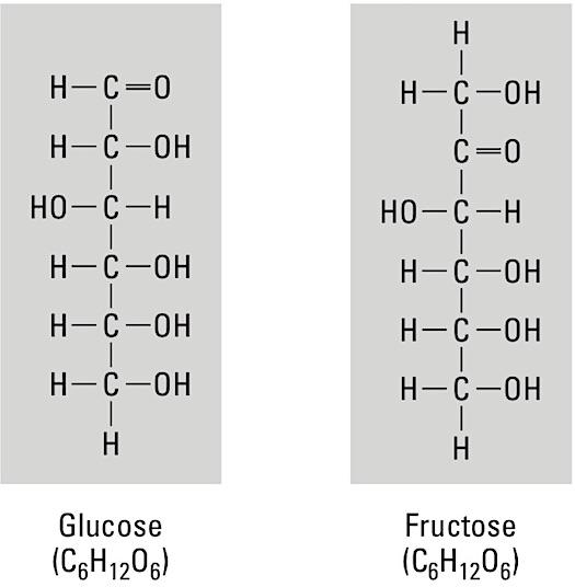anatomy-monosaccharides
