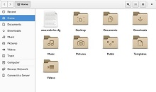 The Linux File Manager window.