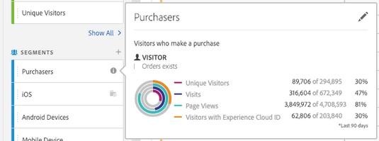 Adobe Analytics custom Purchasers segment