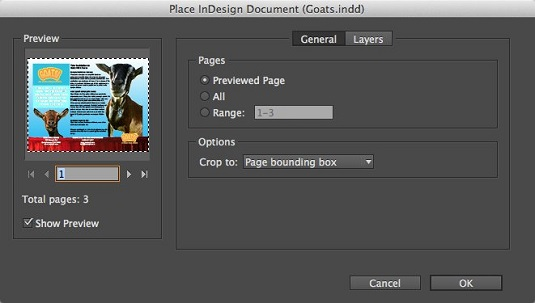 Pl;ace InDesign Document InDesign CC